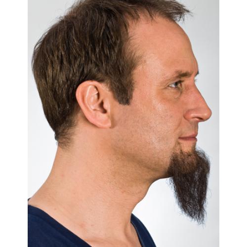 goatee beard 09230